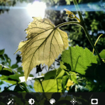 nexus2cee_Screenshot_2015-05-23-14-53-28